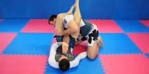 Delta gym techniky armlock